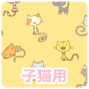 子猫用キャットフード