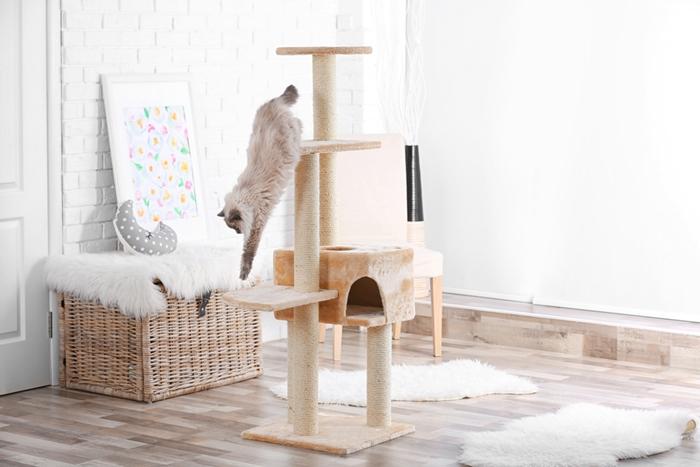 運動量の多いシャム猫にはキャットタワー