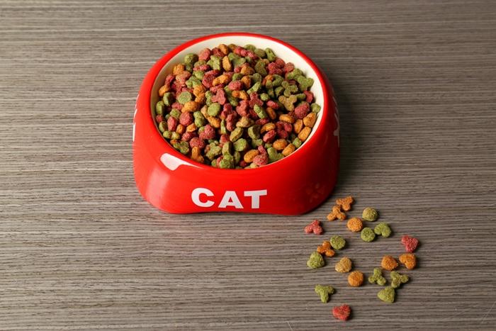 シャム猫と食器