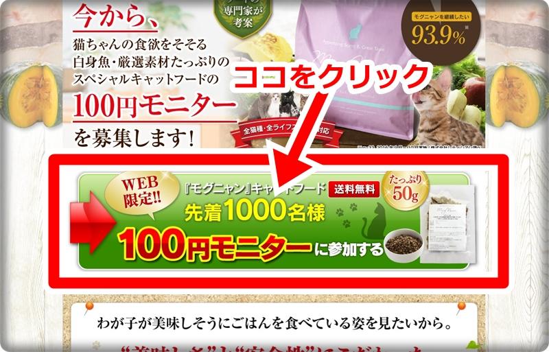 モグニャンの100円モニターの申込方法