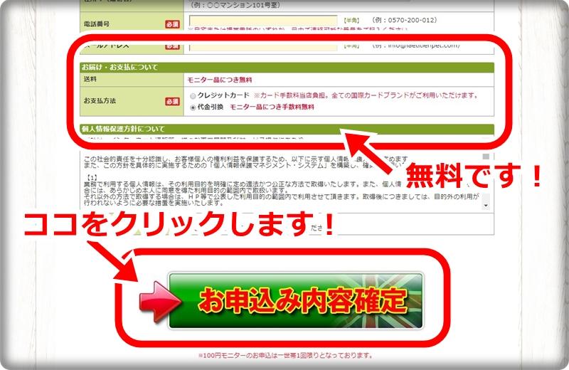 モグニャン100円モニターの申込内容全て記入してクリックします